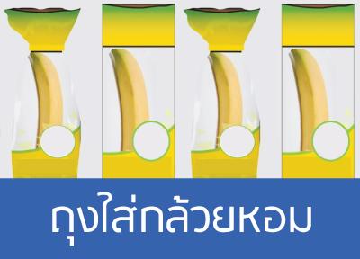 ถุงใส่กล้วยหอม เชือกฟาง RTP เชือกฟางราคาถูก